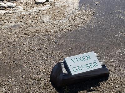 Vixen Geyser. Norris Geyser Basin - Yellowstone National Park