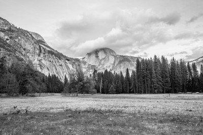 Half Dome. Cook's Meadow - Yosemite National Park
