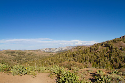 Sonora Pass/Toiyabe National Forest. Road to Mono Lake, CA