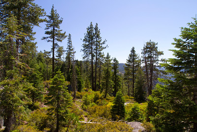 Road to Mono Lake, CA