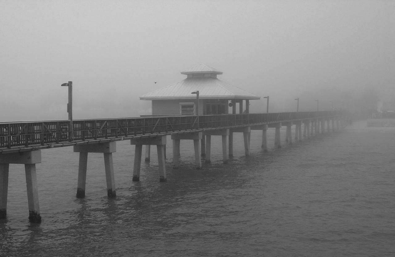Florida Fog