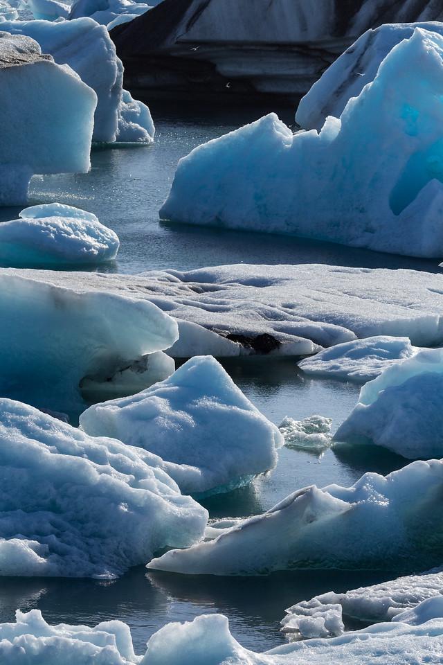 Iceberg Party