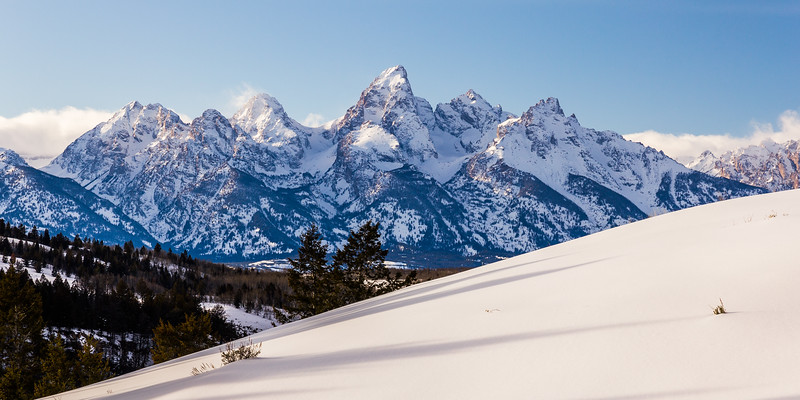 Supple Tetons