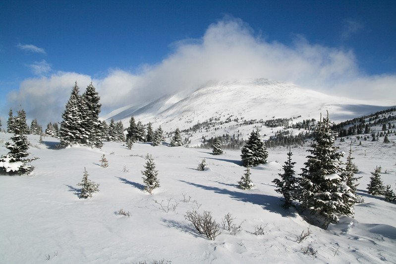 Snowdrifts on Boreas Pass