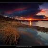 9.2013 - Shell Bay