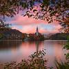 2016.105 - Slovenia XV - LakeBledIslandAmongstTrees - HRes