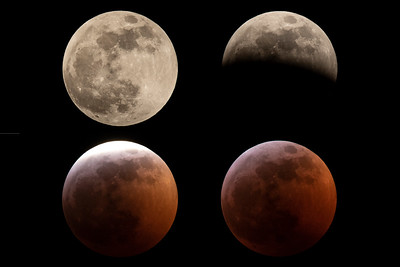 4 Stage Super Blood Wolf Moon Eclipse
