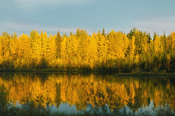 Fall Reflections,  Coldfoot, Alaska