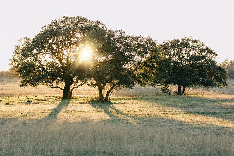 Sunset, Fredericksburg, Texas
