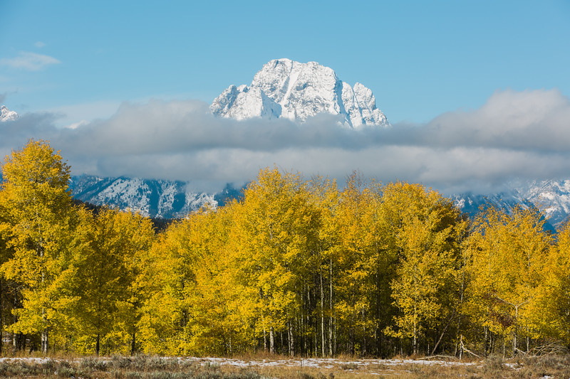 Layers, Grand Teton National Park, Wyoming