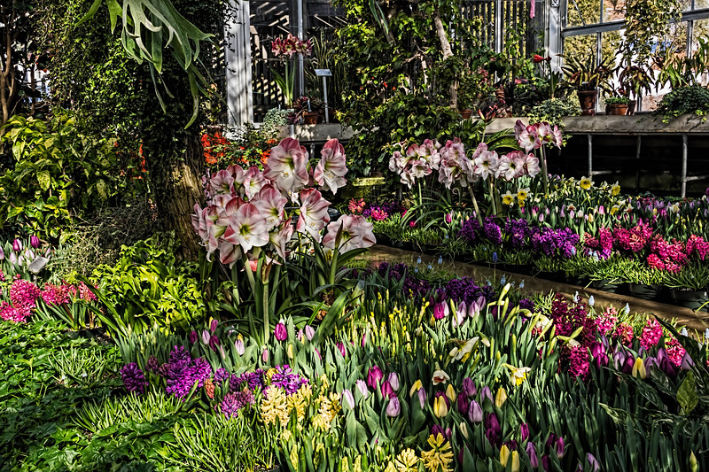 General view of the Spring display