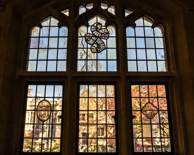 Window 13. North Walk, Hutchins Hall