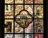 Window 13. North Walk, Hutchins Hall - Cartoon - Anarchy