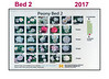 2017 New Bed Map for Bed 02