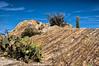 Catalina gneiss at Javelina Rocks