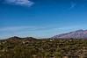 Saguaro NP East view