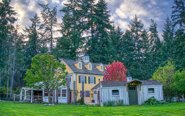 Vashon Island Cottage