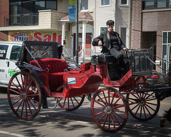 Lincoln Park Horse Drawn Carriage