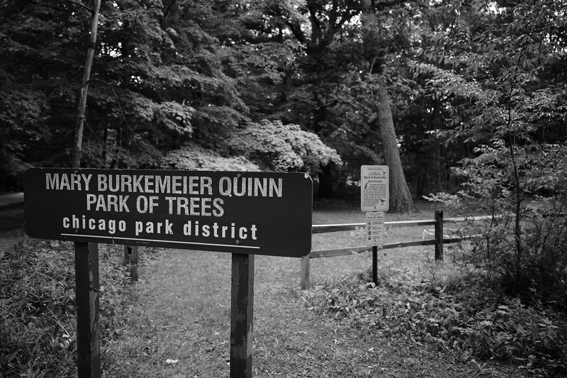Mary Burkemeier Quinn Park of Trees