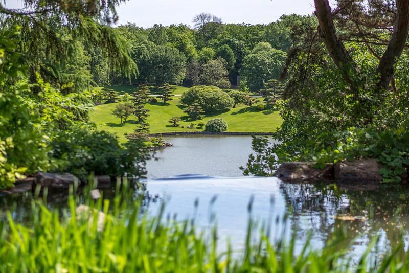 Japanese Garden through the window