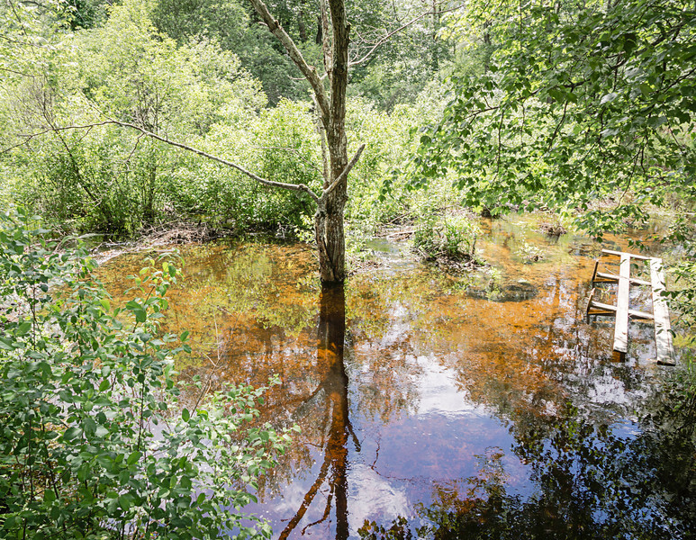 Beaver Brook-On the Little, Rickety Bridge