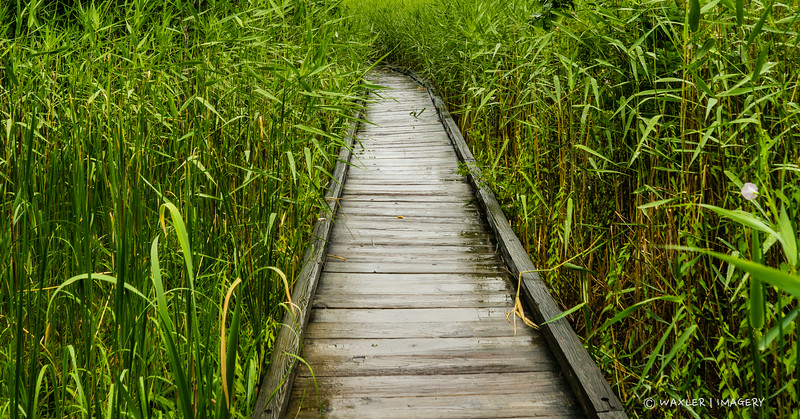 Boardwalk-Sandy Point, Great Bay