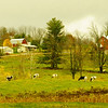 An Iconic Vermont Scene