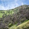 Merced River Canyon Rolling Hills