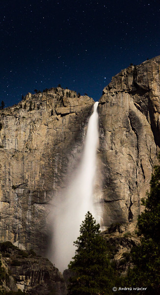 Yosemite Falls in the Moon Light