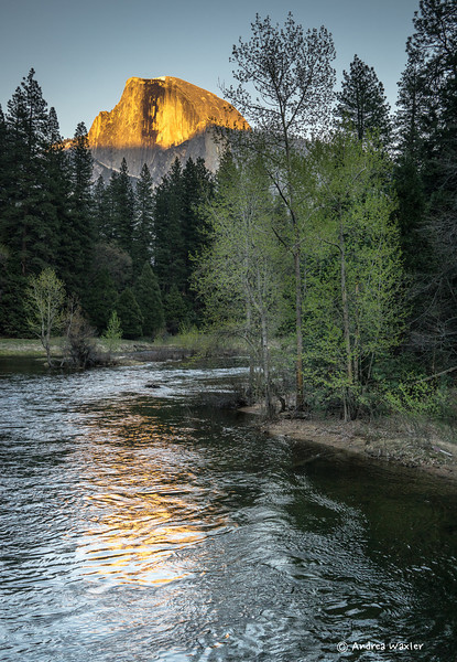 Half Dome in golden light