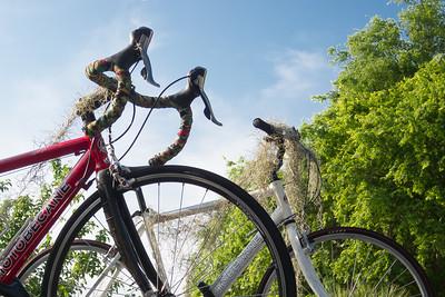 Spanish Moss on the bikes