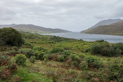 Killary fjord in Connemara