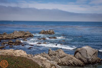 Monterey - Aug 2013