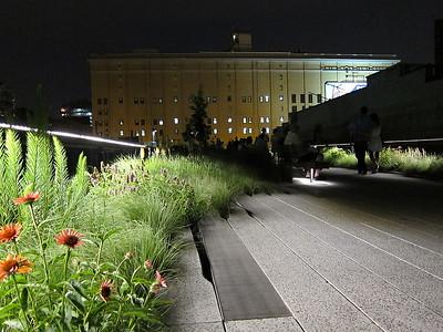 IMG_0224 - Highline