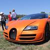Bugatti Veyron_003