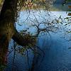 Fall Scenery 1A185087