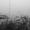 Fall Scenery 1A184998