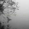 Fall Scenery 1A185033 1
