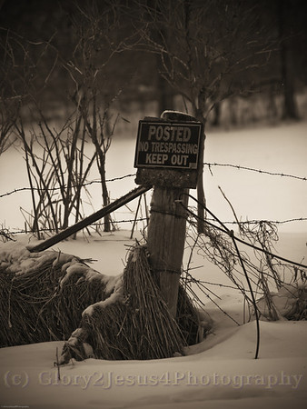 Winter Scenery 2008