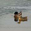 Glory 2 Jesus 4 Photography  At Marshalltown Iowa-3200600
