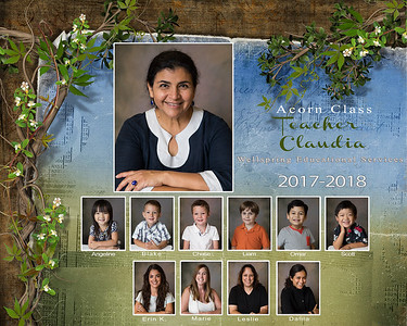 Acorn Class 2017-2018