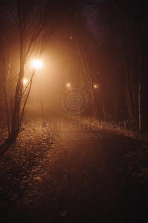 Night Walk At Pispala XII (Path)