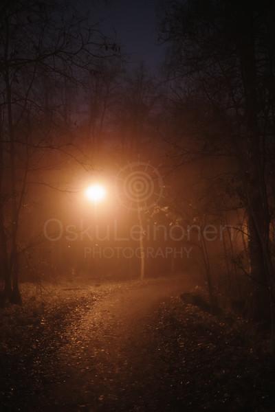 Night Walk At Pispala XIII (Path)