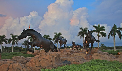 Lely Horses at sunset