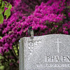 DSC_6881 spring scenes from Greenwood Cemetery