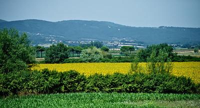 Grosseto-2013 168