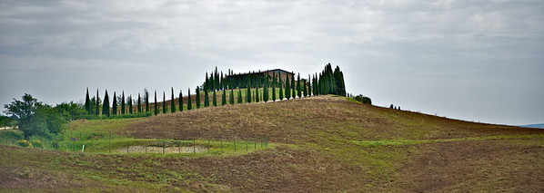 montepulciano and Pienza-2013- 47