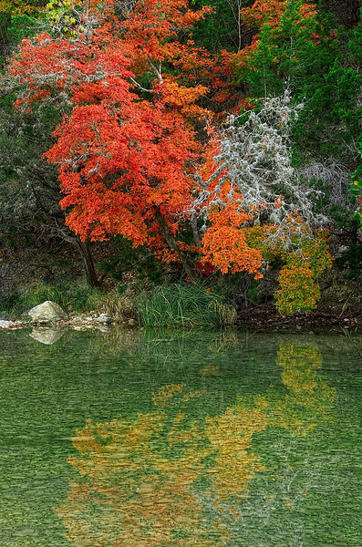 3519 Autumn-Reflections-In-A-Quiet-Pool copy