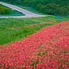 2982-Paintbrush-Flags-The-Bend-In-The-Road_v1 copy