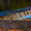 _SATE-11Sunrise-On-Salado-Creek_v1 copy